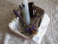 バタフライピーの化粧水を作りました - 花とハーブと四季折々の植物