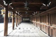 京都とカメラと。北野天満宮を 28-70mm F2.8 DG DN Contemporary #SIGMA #京都 - さいとうおりのお気に入りはカメラで。