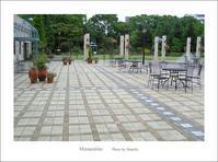 ウィッチフォード鉢が並ぶ庭 - Minnenfoto