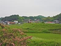 5月24日(月)初夏の福塩線三良坂駅付近 - 庄原市上野公園(上野池)とその周辺の出来事