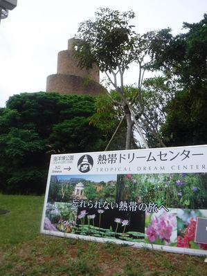 ◆2021沖縄へ⑦ ~いいとこ見ぃ~つけた♪~ - ハッチャンの「大阪大正区で沖縄三昧」