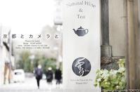 京都とカメラと65mm一本勝負。#SIGMA #京都 #カメラ 65mm F2 DG DN  作例 - さいとうおりのお気に入りはカメラで。