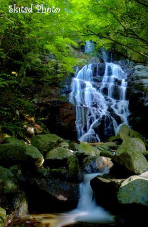 滝の季節 -