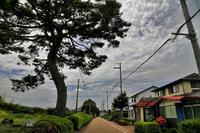 京都の家に行く途中で一寸立ち寄りです(滋賀県甲賀市) - 写真を主とした日記です