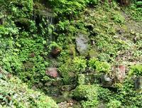 御滝さん、藤滝不動滝 - 大山山麓、山、滝、鉄道風景