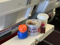 【50代主婦が旅に出る】 機内にオヤツを持ち込む主義だ。旅先で求めた名物オヤツ、さっそく食べちゃう乙女なニョ。【みはしのあんみつ】 - ツルカメ DAYS