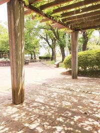 5月9日、NC700Sで諏訪湖ツーリング ~ 3/4「釈迦堂遺跡博物館」前編 - 某の雑記帳