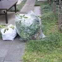 梅雨の前に - お片付け☆totoのえる  - 茨城・つくば 整理収納アドバイザー