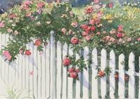 薔薇 - まり子の水彩画
