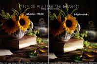 ProfotoA1x vs Godox TT600 オフカメラ対決 #Profoto  #Godox #ストロボ比較 - さいとうおりのお気に入りはカメラで。