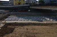 空堀川河床整備工事 5月末 - ひのきよ
