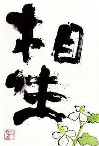 相生・どくだみ - 北川ふぅふぅの「赤鬼と青鬼のダンゴ」~絵てがみのある暮らし~