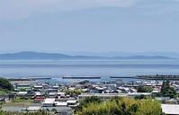 徳島産と鳥取産のラッキョウ漬けを比べる - 島暮らしのケセラセラ