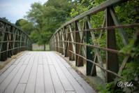橋 / a bridge - Seeking Light - 光を探して。。。