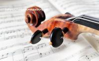 人気投票あり、オンラインバイオリンコンクール - 日本、フィレンツェ生活日記
