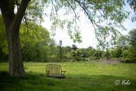 忘れ去られたベンチ / a bench forgotten - Seeking Light - 光を探して。。。