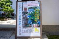 「甘茶の庭-霊源院-」 - ほぼ京都人の密やかな眺め Excite Blog版