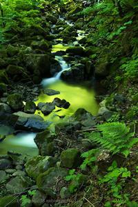 輝く渓流 - デジタルで見ていた風景
