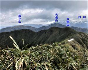 No531水芭蕉と白山展望の福井取立山 - みちくさおじさん山を歩く