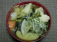 じゃがいも入り野菜煮 - 食写記 ~Shokushaki's Blog~