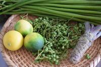 季節の瓶詰め*山椒の実 - 小皿ひとさら