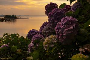 糸島の景~いとしまのしらべ? - 糸島の景~いとしまのしらべ~