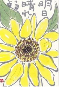 ひまわり「明日晴れるよ」 - ムッチャンの絵手紙日記