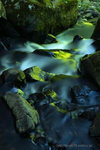 緑映 - デジタルで見ていた風景