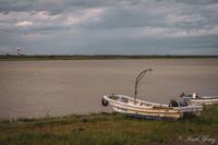 広い河の岸辺 - SCENE