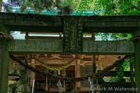 色見熊野座神社-参道 - Mark.M.Watanabeの熊本撮影紀行