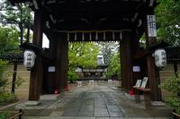 咲き急ぐ花達イチハツ@上御霊神社 - デジタルな鍛冶屋の写真歩記