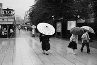 雨の散歩 - don't fight it
