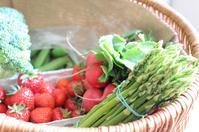 新鮮なホワイトアスパラガスとイチゴを買いに - 毎日テニス(旧 Rudern macht Spass.)