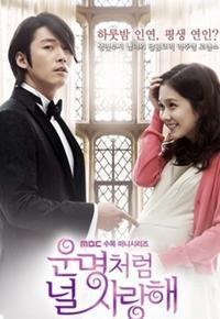 韓国ドラマ『運命のように君を愛してる』 - ふだん着日和
