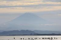 海へ・・2021.6.6 - The day & photo
