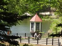 西岡公園(アオサギ) - 小さなお庭のある家4