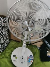 扇風機買う - 人生マクられまくり
