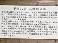 5/16、平塚八幡宮 - 某の雑記帳