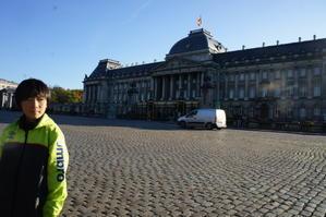 Palais de Bruxelles - Mon petit chou