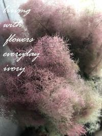 IVORY 花教室6JUNE  開催です〜♬ -  Flower and cafe 花空間 ivory (アイボリー)