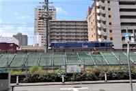 藤田八束の鉄道写真@東海道本線神戸線に紫陽花の花が咲きました、貨物列車とアジサイの花の競演です・・・・アジサイの花と貨物列車、西宮市神祇官町にて - 藤田八束の日記