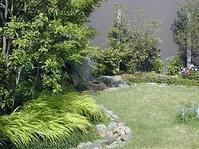 6月の庭 - 昭和の家+庭とお片付け