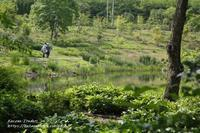 6月の中之条ガーデンズ2021#7「ふる里の野山」など - 風の彩りー3