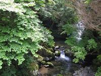 『釜ヶ滝・三の滝を見に・・・・・』 - 自然風の自然風だより