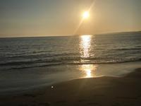 人生の節目に立ち合える光栄 - 海辺のセラピストは今日も上機嫌!