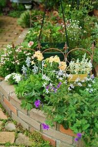タイタニック的メイン花壇(船首) - ハイジの玄関先ガーデン エピソード2♪