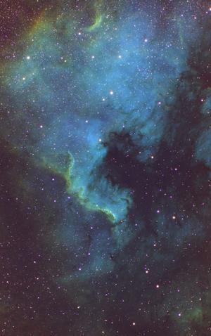 Cygnus Wall (北アメリカ星雲) - 天体写真投稿