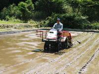 米作りの挑戦(2021)田植え6月9日に田植えを終えました!(前編:暗渠排水工事から田植え前まで) - FLCパートナーズストア