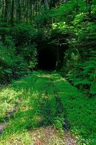 旧・国鉄宮原線トンネル跡 - Mark.M.Watanabeの熊本撮影紀行
