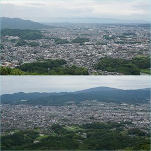 四王寺山&昭和の森花散歩。・・・12日の花散歩。 - そうだ!山に登ろう